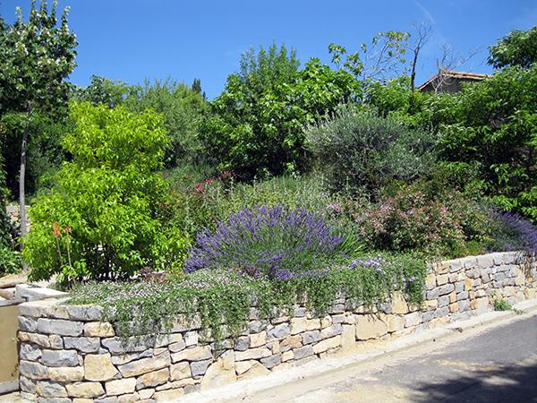 Jardin service r alisations de jardin nature h rault for Jardin service